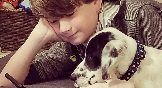 A young boy playing with a dog looking at the cell phone.